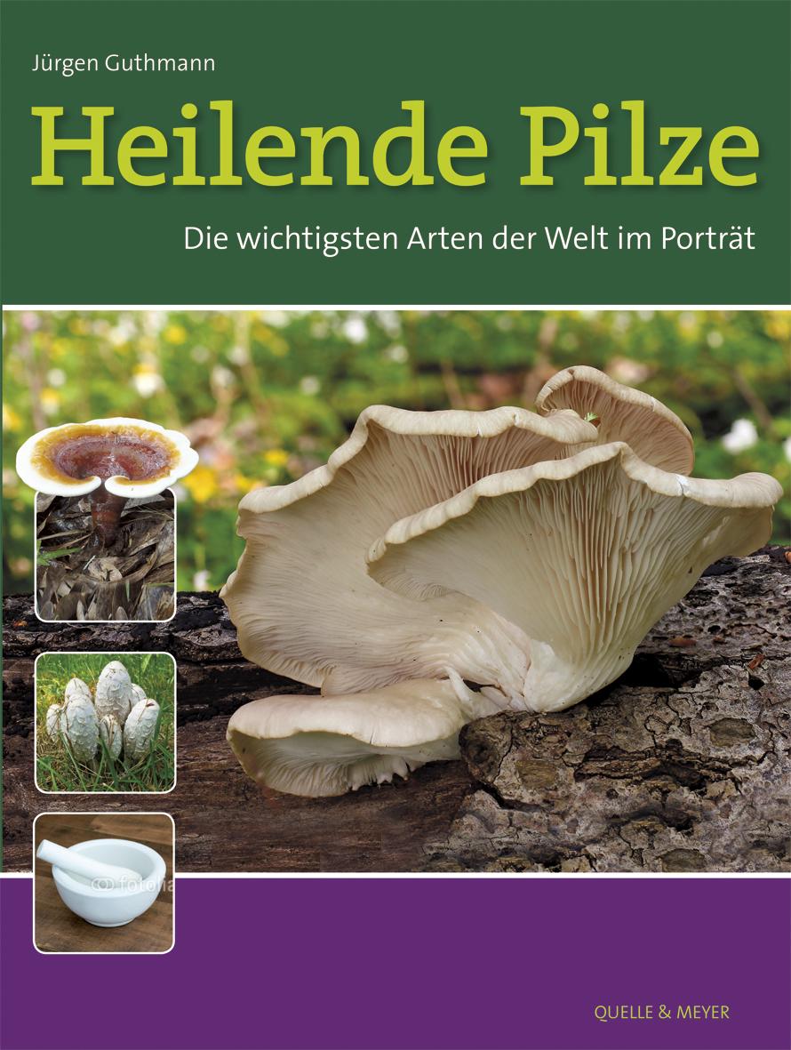 Heilende Pilze - Die wichtigsten Arten der Welt im Potrait