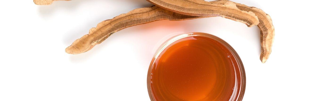 Heilpilz Tee