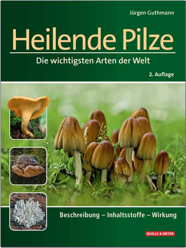 Heilende Pilze - Die wichtigsten Arten der Welt
