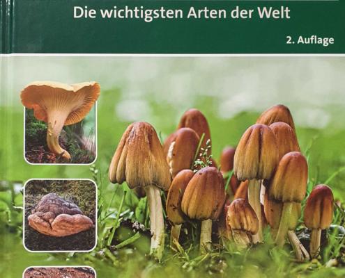 Heilende Pilze Buch